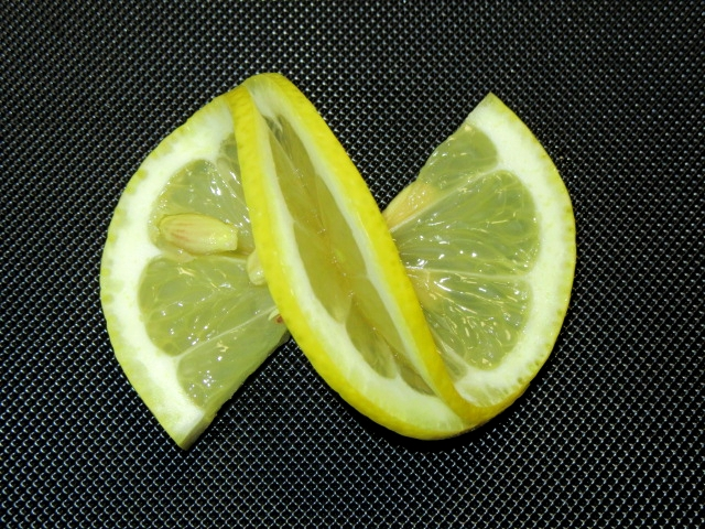 レモンの飾り切り方法,蝶々の切り方