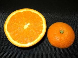 オレンジ,飾り切り,カップ,果物