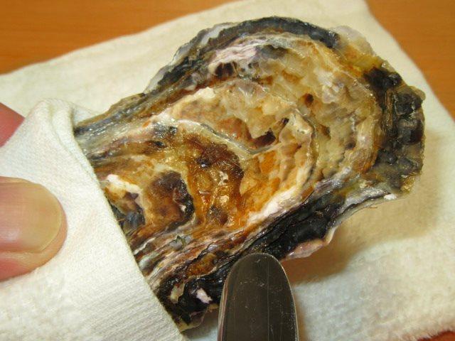 かきのからむき方法と牡蠣の貝柱を外して殻を開ける手順