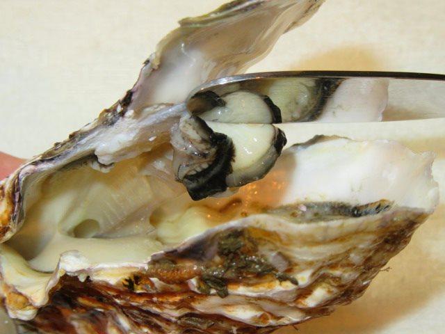 かきのからむき方法,牡蠣の殻を開けて身を取り出すところ