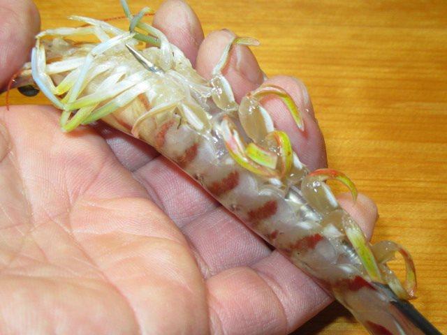 くるま海老の焼き物の串打ち方法とコツ
