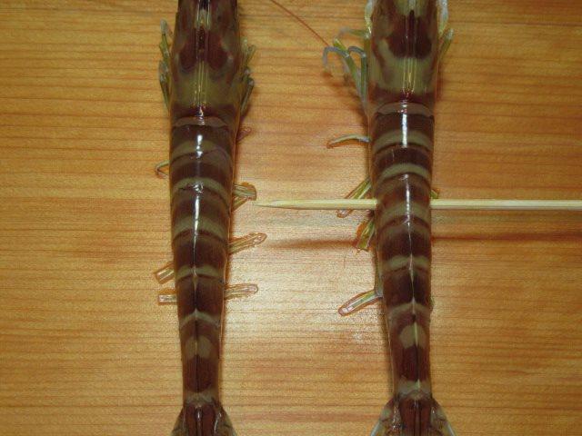 車海老の焼き物の竹串打ち