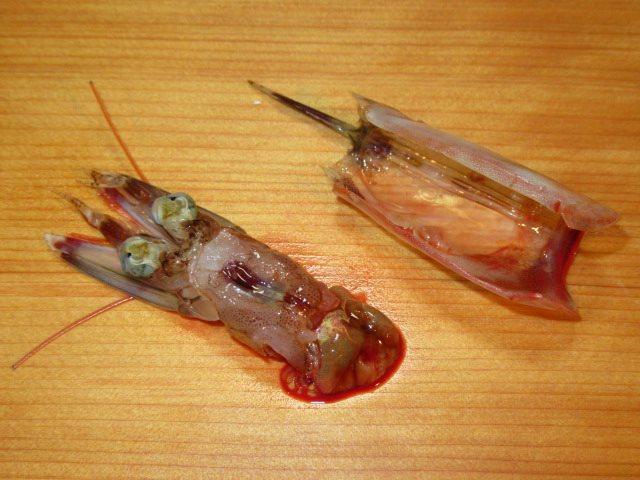車海老の天ぷらの下処理方法,揚げ物の調理,才巻えびの頭胸甲を外す工程