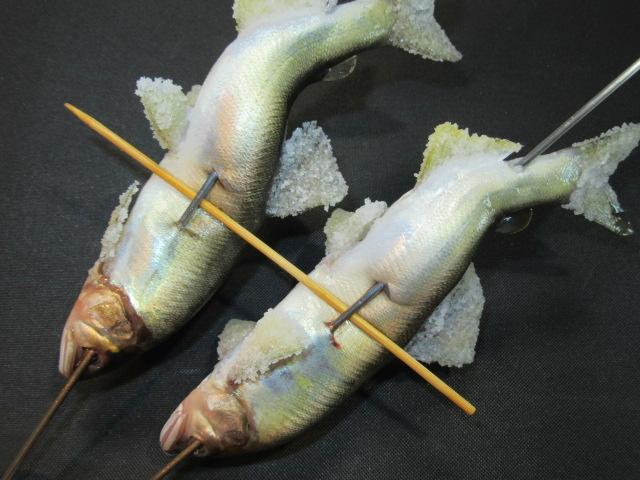 鮎の串打ち手順,2匹の場合の仕上げ,化粧塩