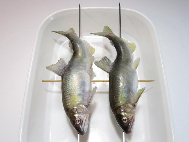 鮎の串打ち手順,2匹の場合の仕上げ